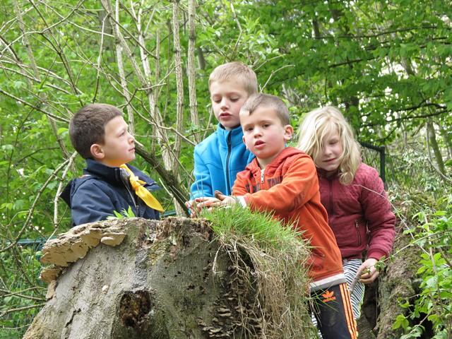 thumbnail-Inschrijven voor zomeractiviteiten voor kinderen vanaf woensdag 19 mei