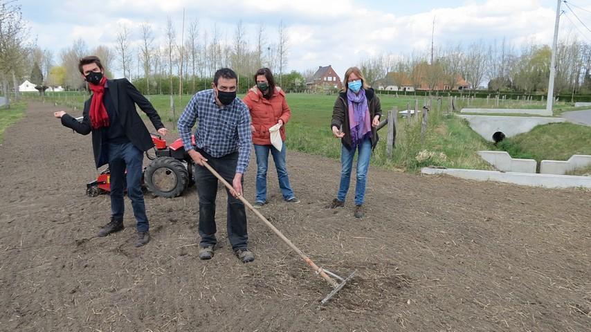 thumbnail-Torhout zaait mee aan de grootste bloemenweide van de Benelux