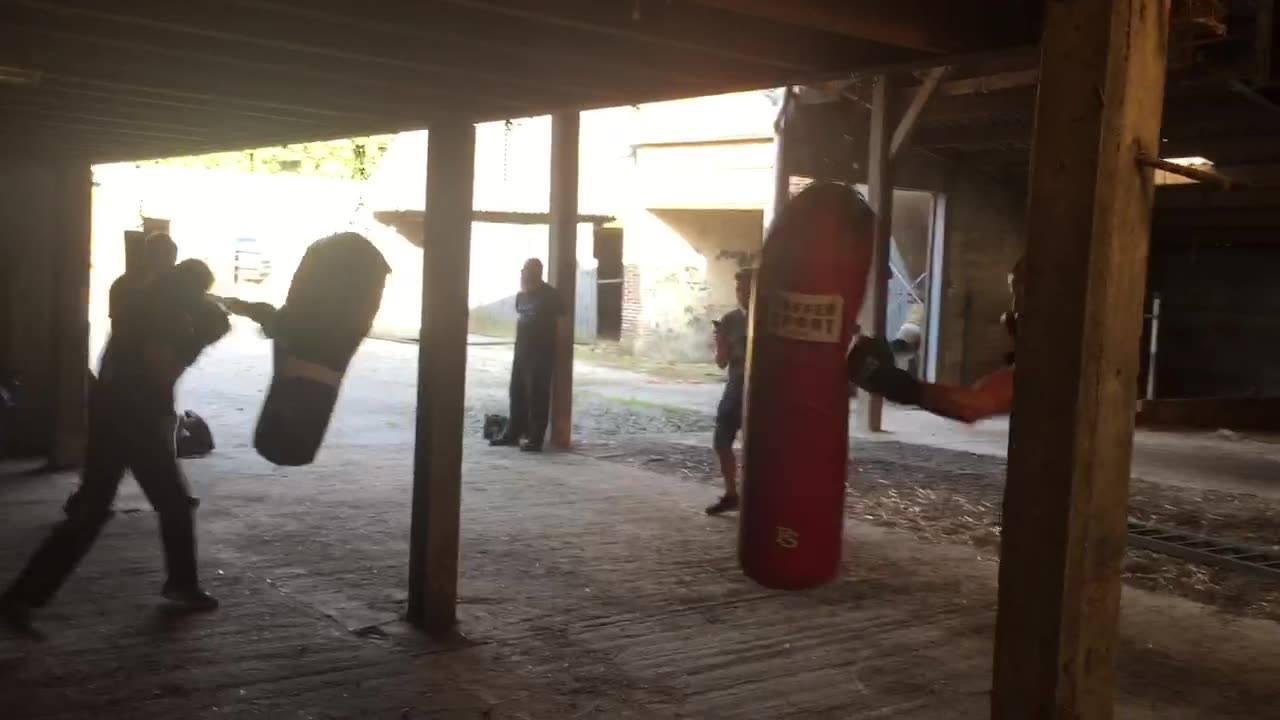 thumbnail-Trainingen Boxing Team Houtland terug van start
