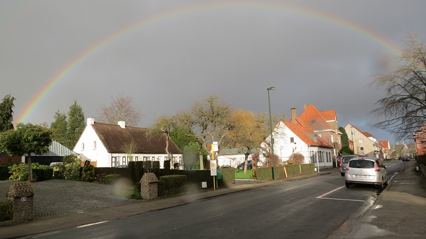 thumbnail-Regenboog