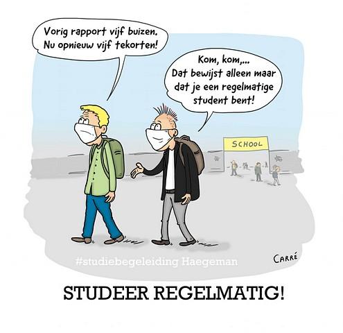 thumbnail-Tip van Studiebegeleiding Haegeman