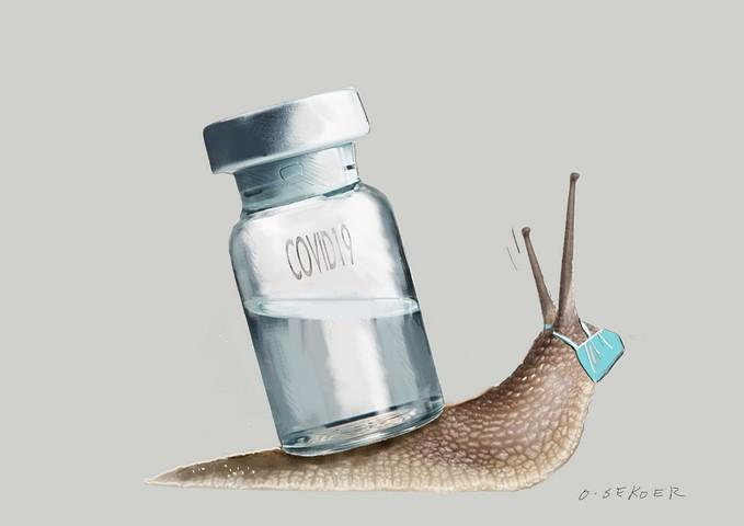 thumbnail-Tijd om te vaccineren vindt ook O-sekoer...